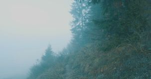Walking on Foggy Mountain. Walking on a misty morning on forest slope stock video