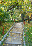 Walking footpath in an autumn Japanese garden royalty free stock image