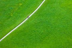 Walking footpath in green field Royalty Free Stock Photo