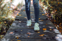 Walking through the forest in autumn. Wooden bridge through the forest in autumn Stock Image