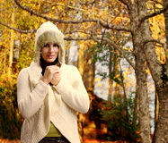 Walking in the forest in late autumn Stock Images
