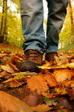 Walking through forest A Stock Photography