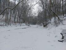 Walking on frozen stream at Williamsport falls on. January 15 2018 Stock Photo