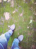 Walking in the garden. Walking on the green grass Royalty Free Stock Images