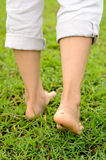 Walking on grass Stock Photography