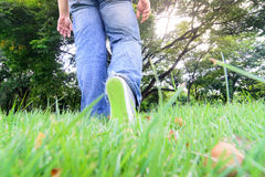 Walking on grass Royalty Free Stock Images