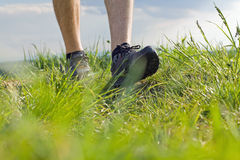 Walking on green grass, exercising outdoors Stock Images