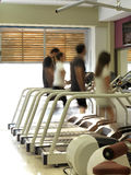 Walking in the gym Stock Images