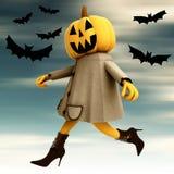 Walking halloween pumpkin witch blue sky Stock Photos
