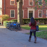 Walking through Harvard Yard Royalty Free Stock Photography