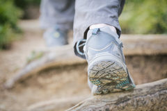 Walking on Hiking Path or Trail Royalty Free Stock Photo