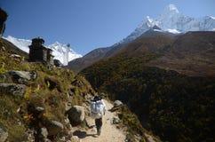 Walking in the Himalayas stock photos