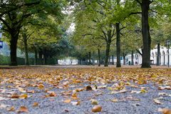 Walking in Hofgarten Park in Munich on a autumn day, Germany. In Europe stock photography