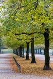 Walking in Hofgarten Park in Munich on a autumn day, Germany. In Europe stock photo