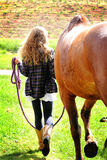 Walking the Horse. A teenage country girl with long wavy hair, walking away with a horse on a lead rope in the sunshine Stock Photos