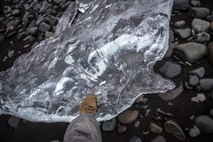 Walking on ice,big piece of ice. Huge transparent piece of ice on black rocks volcanic beach in Iceland Stock Image
