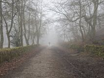 Free Walking In The Fog On A Country Lane In Derbyshire Royalty Free Stock Image - 195788466
