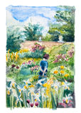 Walking In The Garden Stock Image