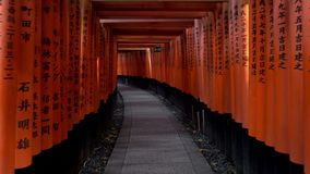 Walking inside Fushimi Inari Taisha, a Shinto shrine in Kyoto, Japan. stock video