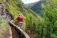 Walking at the levada trail Madeira royalty free stock photo