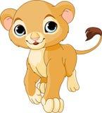 Walking Lion Cub. Walking cute Lion Cub of a white background royalty free illustration