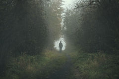 Walking lonely person on a forrest path during a dark day Stock Photos