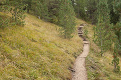 Walking long a mountain path in Valle di Funes into the Italian Dolomites Royalty Free Stock Photo