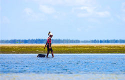 Walking with low waters and ollecting mussels in Mozambique coast Stock Photo