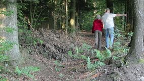 Walking. A man and a woman walking through the woods stock footage