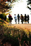 Walking on morning Royalty Free Stock Photo