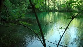 Walking through mountain forest near to the lake,. View from Plitvice lakes. stock footage