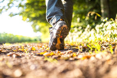 Walking in nature Royalty Free Stock Photo