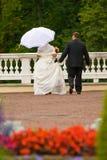 Walking newlyweds Stock Photo
