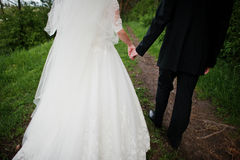 Walking newlyweds holding hand at park at their wedding day. Royalty Free Stock Image