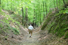 Walking old Natchez Trace U.S.A. Man on historic path used by early trappers and American Indians stock photo