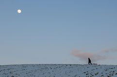 Walking over hill of snow with moonlight. Child pulling toboggan over hill of snow in moonlight Stock Photography