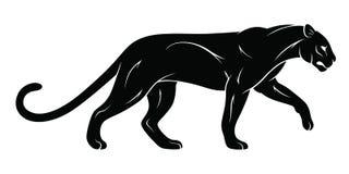 Walking panther Royalty Free Stock Photography
