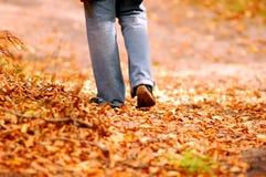 Walking through park Stock Photo