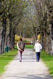 Walking in the park. A couple walking in the park on a spring day Stock Photos