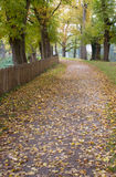 Walking in the Park with The Brilliant Colors Of Autumn Royalty Free Stock Image