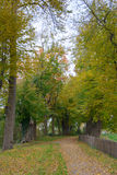 Walking in the Park with The Brilliant Colors Of Autumn Stock Images