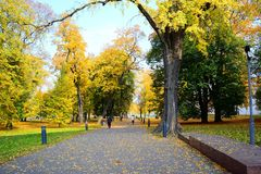 Walking in the park of Cathedral square in Vilnius city Stock Photo