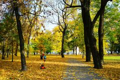 Walking in the park of Cathedral square in Vilnius city Stock Photography