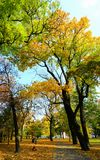 Walking in the park of Cathedral square in Vilnius city Stock Photos