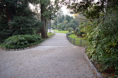 Walking through the park Stock Photography