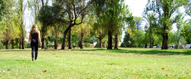 Walking Through The Park (North Adelaide). Photograph taken in a park in North Adelaide, featuring a woman walking (Australia Royalty Free Stock Images