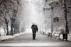 Walking in the park during snow stock images