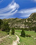 Walking pass in Madriu-Perafita-Claror Valley in Andorra. The slope in Madriu-Perafita-Claror Valley in Andorra with a meadow, fir forest and Pyrenees mountains Royalty Free Stock Photography