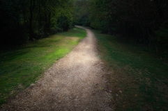 Walking Path stock photography