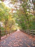 Walking Path royalty free stock photos